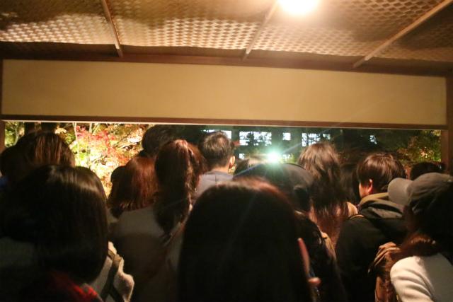 永観堂の夜間ライトアップ混雑